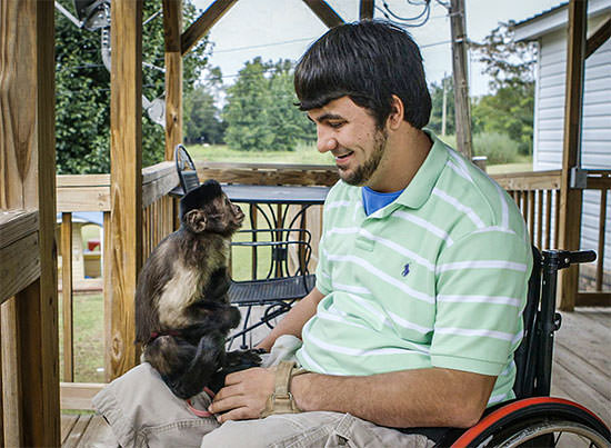 Assistance Monkey helping man in wheelchair