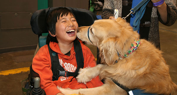 A little boy in a wheelchair is laughing as a dog nuzzles his face.