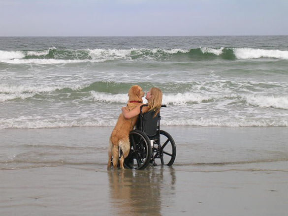 Image of a girl and her loyal service dog at the beach, enjoying the view.