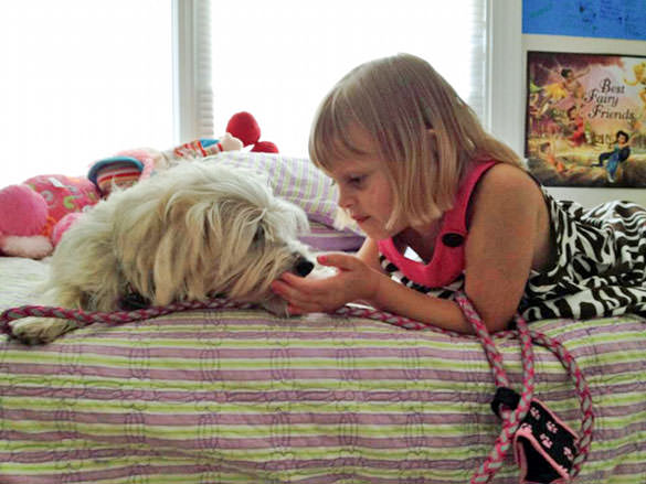 Service dogs. Image of girl and her dog.