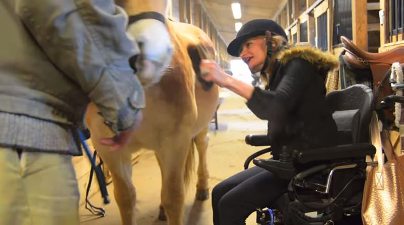 how to become an equine assisted therapist