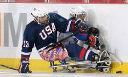 Paralympic Sled Hockey in action.