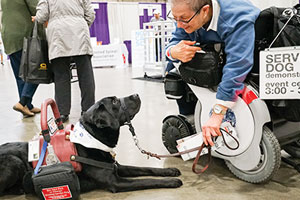 Service Dog Demonstration