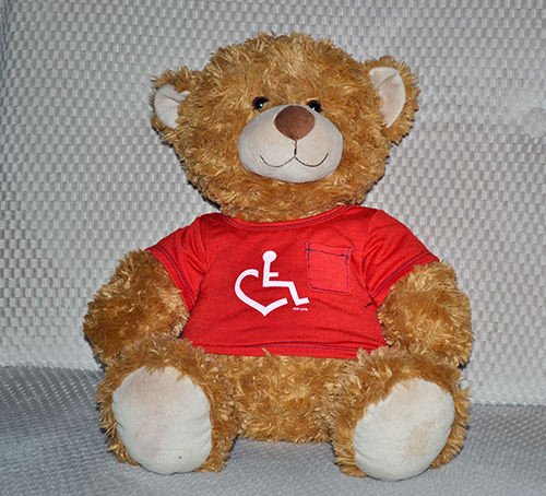 Teddy Bear with wheelchair love shirt on.